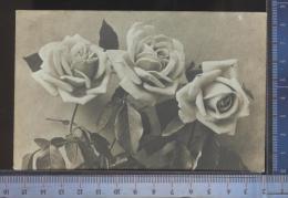 A  338/731   CPA CARTOLINA POSTALE 1910 FIORI DA CASTIGLION FIORENTINO PER LIVORNO - Fiori, Piante & Alberi