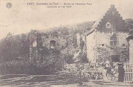Comblain-la-Tour - Ruines De L'Ancienne Tour - Hamoir