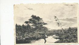 Kalmthoutse Ven - Avondstemming - Van Rooten Jacques - Kalmthout