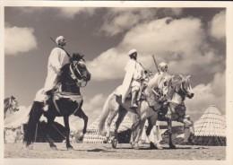C P S M-C P M---le Maroc Artistique--cavaliers De Tribus---voir 2 Scans - Autres