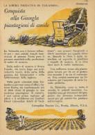 # CATERPILLAR TRACTOR Co.USA 1950s Italy Advert Pub Reklame Peoria Illinois USA Bulldozer Thailand Starch - Tracteurs