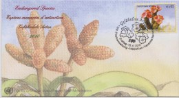 United Nations FDC Mi 640 Endangered Species - Hoodia - Suculent Plants - 2010 - FDC