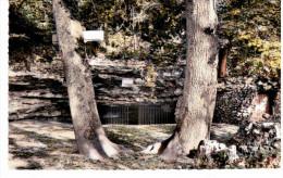 Les Grottes D'Arcy Sur Cure - L'entrée Des Grottes - Francia