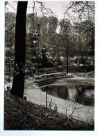 5028    Cpm  SAARBRUCKEN  : Deutsch -Französische ,  GARTENSCHAU 1960  , Carte Photo !! - Saarbruecken
