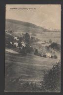 DF / 68 HAUT-RHIN / AUBURE ( ALTWEIER ) / VUE GENERALE / CIRCULÉE EN 1920 - Altri Comuni