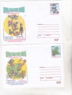 Romania 2004 Set Of 2 Uncirculated Postal Stationery - Forest Month 2004 Philatelic Exhibition Timisoara - Bäume