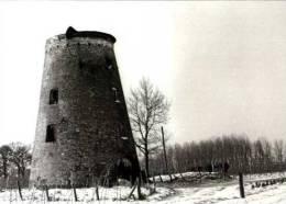 RUMMEN Bij Geetbets (Vlaams-Brabant) - Molen/moulin - Stenen Romp Van De Molen Van Rummen. Winteropname Febr. 1985 - Geetbets
