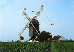 HUISE Bij Zingem (O.Vl.) - Molen/moulin - Huisekoutermolen In Feesttooi Tijdens De Inhuldiging In 1975. Zeldzame Opname! - Zingem