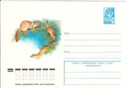 Russia USSR 1978 Fauna Animal Mammal Beech Marten - 1923-1991 USSR