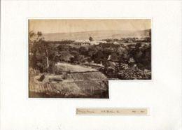 SOUTH AFRICA KRAGGA KAMMA GAME PARK PORT ELIZABETH 1890 - Photographs