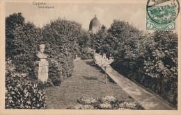 CPA SILESIE - OPPELN OPOLE - Gorzów Śląski - Plebiscite De 1921 - Schlosspark - Cachet 1921 - TB - Polen