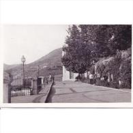 CDBTP5555-LFTD10917.Tarjeta Postal DE CORDOBA.Jardines.VISTA DEL PASEO DE COLOMBIA En PRIEGO - Córdoba