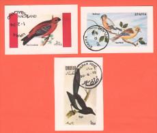 Birds Uccelli Oiseaux  Staffa Urra  Dhufar  Foglietti Usati - Etichette Di Fantasia