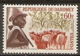DAHOMEY.  1963.  Y&T N°188 *.   Peuhl  /  Gardien De Troupeau  /  Boeufs. - Bénin – Dahomey (1960-...)