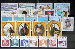 Sahara-Lot Stamps (ST340) - Vignettes De Fantaisie