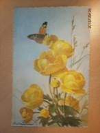 C. Klein, Fleurs, Papillon (14157) - Klein, Catharina