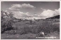 AK - St.Leonhard Kreis Freistadt - Ohne Zuordnung