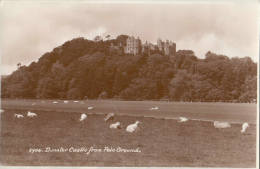 DUNSTER CASTLE FROM POLO GROUND - England