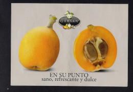 # NISPEROS GARSAN Tag Balise Etiqueta Anhänger Cartellino Fruits Frutas Frutta Früchte Neflier Nespolo Medlar - Fruits & Vegetables