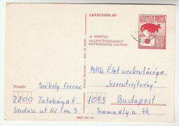 HUNGARY TUCAN Bird  POSTAL STATIONERY CARD Stamps Cover Birds - Postal Stationery