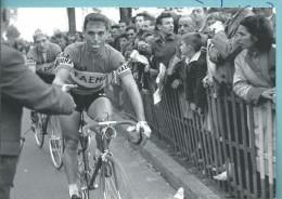 Cyclisme Sur Route Paris - Tours  Cpm Edition Spéciale De La Nouvelle République Pour La100 ème  1959 Rick Van Looy - Radsport