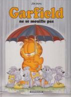 Ne Se Mouille Pas - Garfield