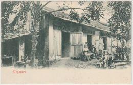 25773g  SINGAPORE - Natives  - 1907 - Singapour