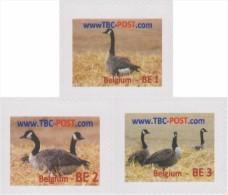Belgique 2012. Poste Privée TBO. Oies. Tarifs Pour Lettres Pour L´intérieur Jusque 50 G (normalisée), 100 G Et 350 G - Oies