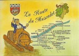 44 Loire Atlantique AU  PAYS NANTAIS La Ronde Du Muscadet  Carte Neuve Voir Le Scan - Francia