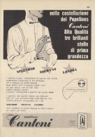 # CAMICIE CANTONI 1950s Advert Pubblicità Publicitè Reklame Shirts Chemises Camisetas Hemden - Signore