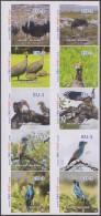 Belgique 2014. Poste Privée TBO. Oiseaux D'Afrique Du Sud (Autruche Calao Kori Pintade) Tarif Pour L'Europe Jusque 100 G - Autruches