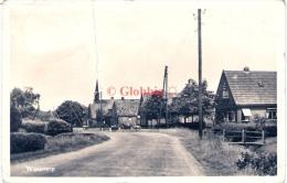 Wijnjeterp ( Opsterland)  Zicht Op Het Dorp Echte Fotokaart 1952 - Netherlands