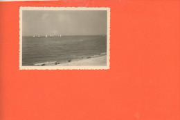 14 Courseulles Sur Mer : Photo (dimensions 8.8 X 6) - Photographie