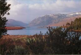 Irlande - Donegal - Glenveagh National Park - Lough Veagh In Winter - Semi Moderne Grand Format - état - Donegal