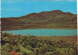 Cpm  GRAND ETANG CRATER LAKE In The Center Of The Island - Grenada