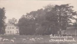Zwarte Fotokaart Kasteel Diepenbroeck Te Lovendegem 1929 - Lovendegem