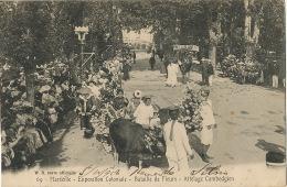 Cambodge Attelage Cambodgien Expo Coloniale De Marseille  Bataille De Fleurs 1906 Vers Buenos Aires Argentine - Cambodge