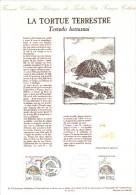 14482 - TORTUE TERRESTRE - DOCUMENT PHILATELIQUE DU 1er JOUR DU TIMBRE (FRANCE 1991) - Schildpadden