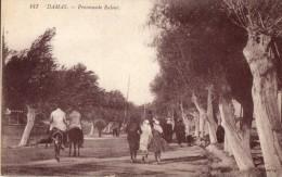 Promrnade Raloue - Syrië