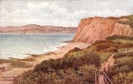 A. R. Quinton  -  The Cliff Path Near Exmouth In Devon   -     1770 - Quinton, AR