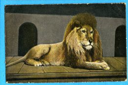 LIPP591, Lion , Circulée 1909 - Löwen
