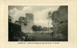 45 DORDIVES Ruines Du Chateau Du Melz Carte Cuvette Embossée - Dordives