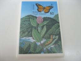 British Virgin Islands-Butterflies - Butterflies
