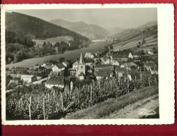 EZB-15 Vue Générale De Saint-Martin Bas-Rhin, Vignes. Cachet Steige 1932 Pour Zürich - Otros Municipios