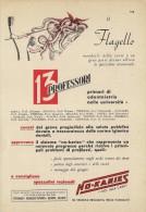 # DENTIFRICIO NO-KARIES GENOVA 1950s Advert Pubblicità Publicitè Reklame Toothpaste Zahnpaste Oral Dental Healthcare - Attrezzature Mediche E Dentistiche