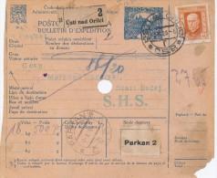 J3542 - Czechoslovakia (1925) Postal Parcel Dispatch Note: Usti Nad Orlici / Parkan 2 / Budapest / Stari Becej - Czechoslovakia