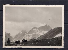 Auf Der Reiteralpe 1954 - Orte