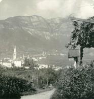Italie Tyrol Du Sud Montagne Caldaro Pres De Bolzano Ancienne Photo Stereoscope NPG 1900