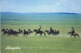 Mongolia - Horsemen - Mongolië