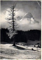 Berchtesgadener Alpen - S/w Kühroint Alm Mit Kleinem Watzmann - Berchtesgaden